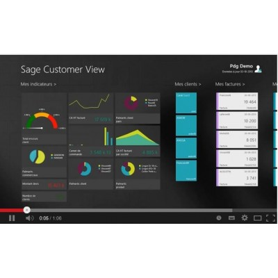 Sage Customer View 100